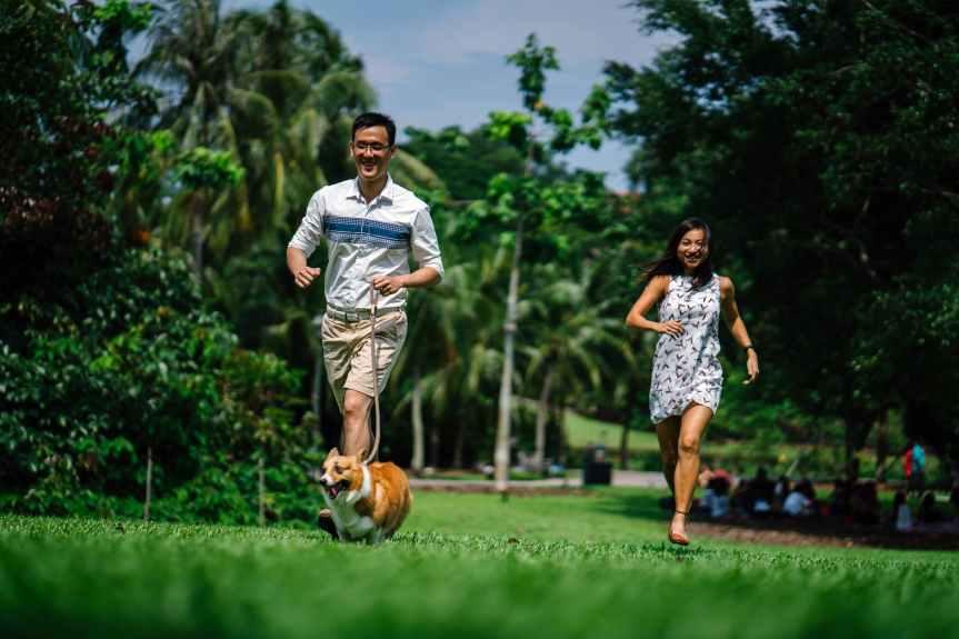 Run, Walk, Move!